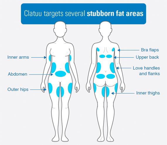 Stubborn Fat Treatment Area