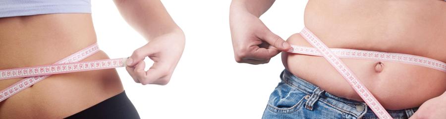 LE SHAPE Slimming Laser Premier Clinic